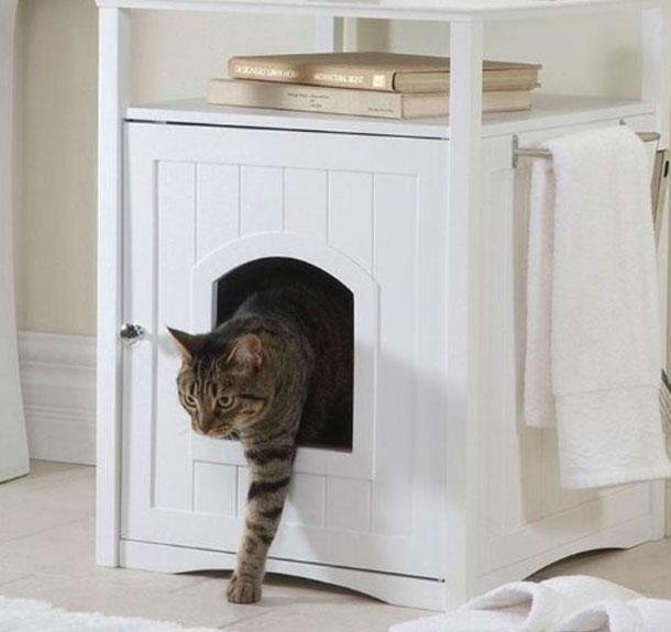 cadouri proprietari pisici