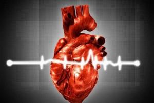 curiozitati despre inimile noastre